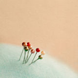 Vintage pearlized pins Royalty Free Stock Photography