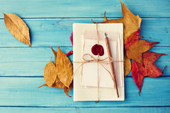 Vintage Pen and autumn leafs Stock Photo
