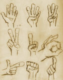 Vintage Pencil Drawn Hands. Hands sketched in pencil on vintage paper with sepia tone vector illustration