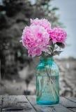 Vintage peonies. Pink peonies in an old blue ball jar Royalty Free Stock Images