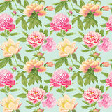 Vintage Peony Flowers Background Stock Photography