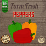 Vintage  peppers  poster Royalty Free Stock Photography