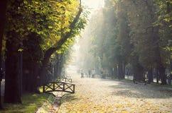 Vintage photo of an autumn park Stock Images