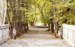 Vintage photo of autumn park Stock Photos