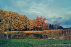 Vintage photo of beautiful autumn landscape - the autumn pond Stock Photo