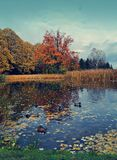 Vintage photo of beautiful autumn landscape - the autumn pond Royalty Free Stock Image