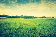Vintage photo of beautiful landscape with morning meadow Royalty Free Stock Photos