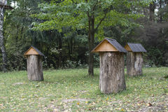 Vintage photo of bee hives. In forest royalty free stock photography