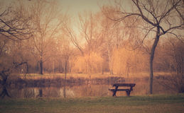 Vintage photo of a bench in park Royalty Free Stock Images