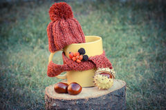 Vintage photo, Cup of beverage with woolen cap wrapped scarf on wooden stump Stock Photo