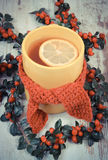 Vintage photo, Cup of hot tea with lemon wrapped woolen scarf and cotoneaster Stock Image