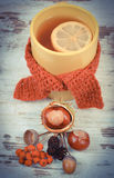 Vintage photo, Cup of tea with lemon wrapped woolen scarf Stock Images