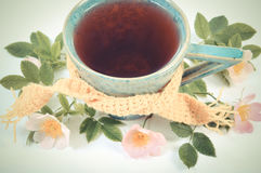 Vintage photo, Cup of tea with wild rose flower on white background Royalty Free Stock Photos