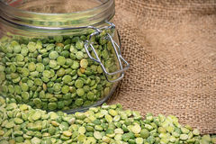 Vintage photo of dried peas stock photography