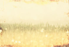 Vintage photo of field and lens flare pic stock photo