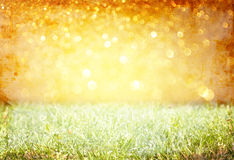 Vintage photo of field and lens flare Royalty Free Stock Photos