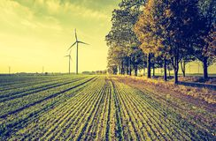 Vintage photo of field with windmills Royalty Free Stock Photo