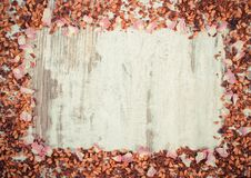 Vintage photo, Frame of dried wild rose petals and tea grains, copy space for text Stock Photography