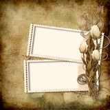 Vintage Photo Frame with roses Royalty Free Stock Image