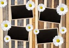 Vintage photo frames Stock Photography