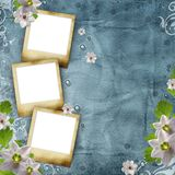 Vintage photo frames Royalty Free Stock Photography