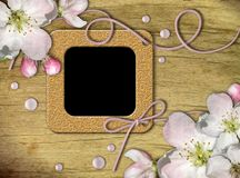 Vintage photo frames and quince tree flowers Stock Photography