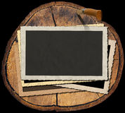 Vintage Photo Frames on Section of Tree Trunk Stock Images
