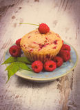 Vintage photo, Fresh baked cupcake and raspberries on plate on old wooden background, delicious dessert Royalty Free Stock Photo