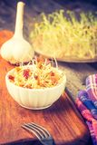 Vintage photo of fresh lentil and wheat sprouts salad Royalty Free Stock Image