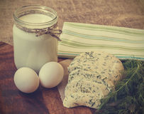 Vintage photo of homemade cheese with dill, milk and eggs. Homemade cheese with dill, milk and eggs on the wooden background. Vintage toned picture Royalty Free Stock Photo