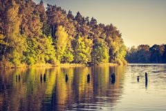 Vintage photo of lake landscape with forest. Royalty Free Stock Photos