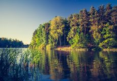 Vintage photo of lake landscape with forest. Royalty Free Stock Photography