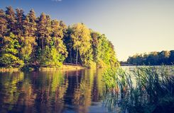 Vintage photo of lake landscape with forest. Stock Photos