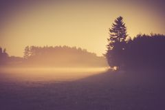 Vintage photo of morning foggy meadow in summer. Rural landscape Stock Photography