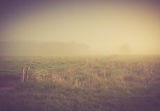 Vintage photo of morning foggy meadow in summer. Rural landscape Stock Photo