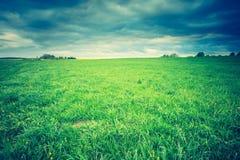 Free Vintage Photo Of Green Springtime Meadow Landscape Stock Photos - 54380253
