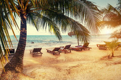 Vintage photo of paradise beach with palms and  lounge chairs . Cambodia Stock Images