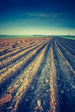 Vintage photo of plowed field in calm countryside Royalty Free Stock Image