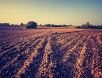 Vintage photo of plowed field landscape Royalty Free Stock Image