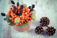 Vintage photo, Red viburnum with alder cone, acorns and pine cones on rustic wooden background Stock Photography