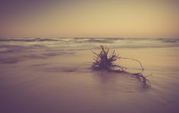 Vintage photo of shore at landscape Royalty Free Stock Photo