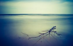 Vintage photo of shore at landscape Royalty Free Stock Image