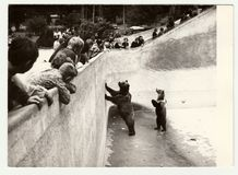 Vintage photo shows people visit ZOO. Two bears stand in bear moat. THE CZECHOSLOVAK SOCIALIST REPUBLIC - CIRCA 1980s: Vintage photo shows people visit ZOO. Two Stock Photos
