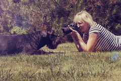 Vintage photo of taking picture of the dog. Blonde middle aged woman is lying on the lawn against her lying Giant Black Schnauzer dog and is taking picture Royalty Free Stock Photography