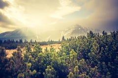 Vintage photo of Tatra mountains landscape Royalty Free Stock Images