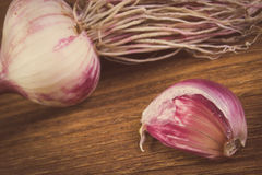 Vintage photo, Whole garlic with roots and clove on wooden table Royalty Free Stock Photos