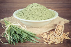 Vintage photo, young powder barley, barley grass and grain on jute canvas, wooden background Royalty Free Stock Images