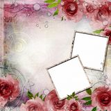 Vintage photoframes on  background with roses Royalty Free Stock Images