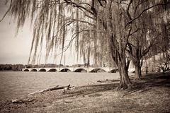 Vintage photograph of bridge in Washington DC. Vintage photograph of bridge and Potomac river near the tidal basin in Washington DC surrounded by beautiful Royalty Free Stock Photography