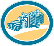 Vintage Pickup Truck Delivery Harvest Retro Stock Photo